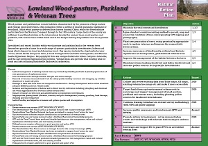 lowland_wood-pasture_parkland_veteran_trees