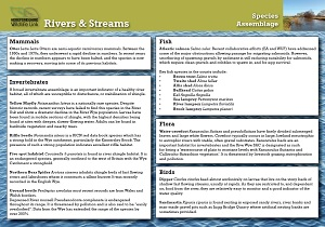 rivers_streams_species