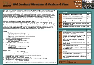 wet_lowland_meadows_pasture_fens